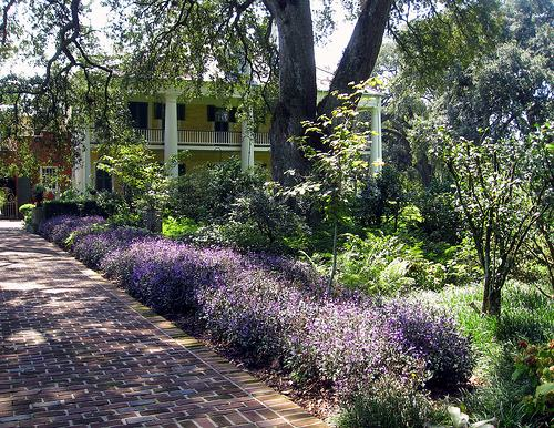 Exemplo de um jardim natural estrutural. Foto de Liz West