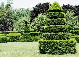 Topiaria em jardim francês